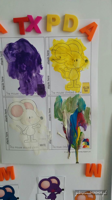 myszki-kolory