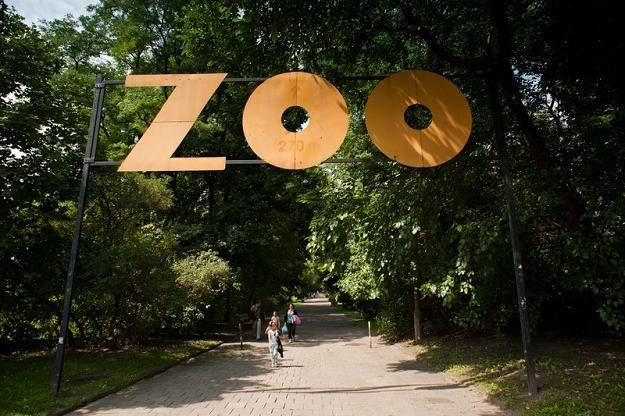 szyld-przy-wejsciu-do-zoo
