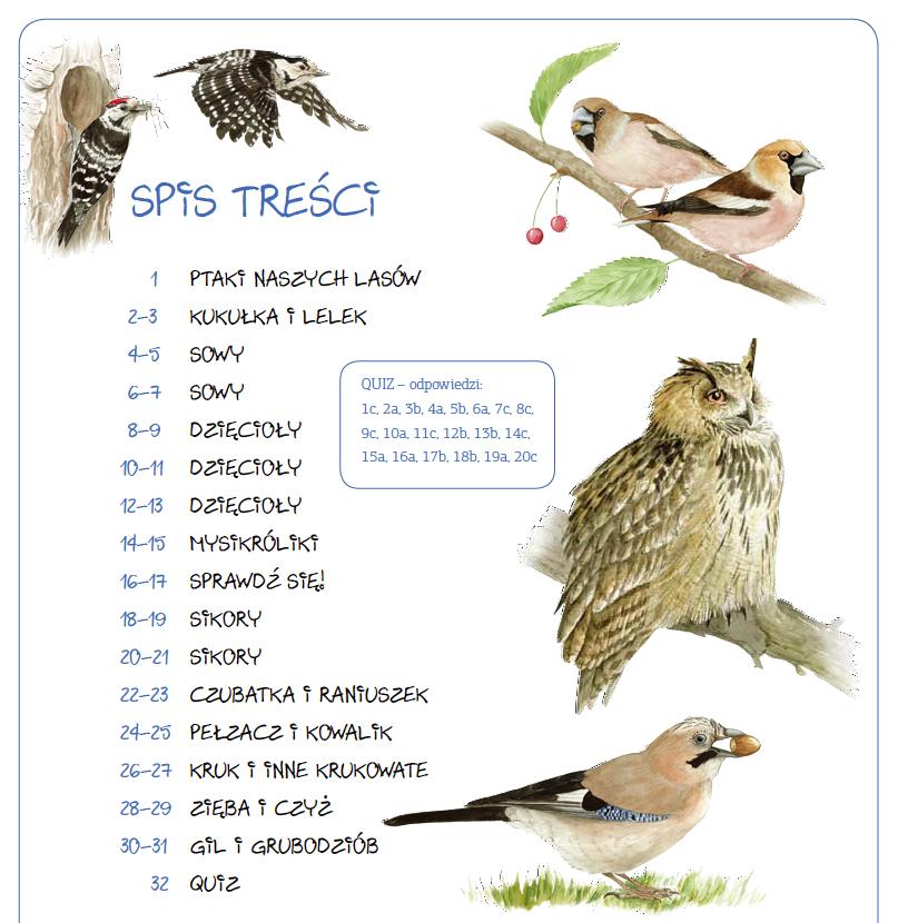 Książki Dla Dzieci O Ptakach I Inne Materiały Dla Małych Ornitologów